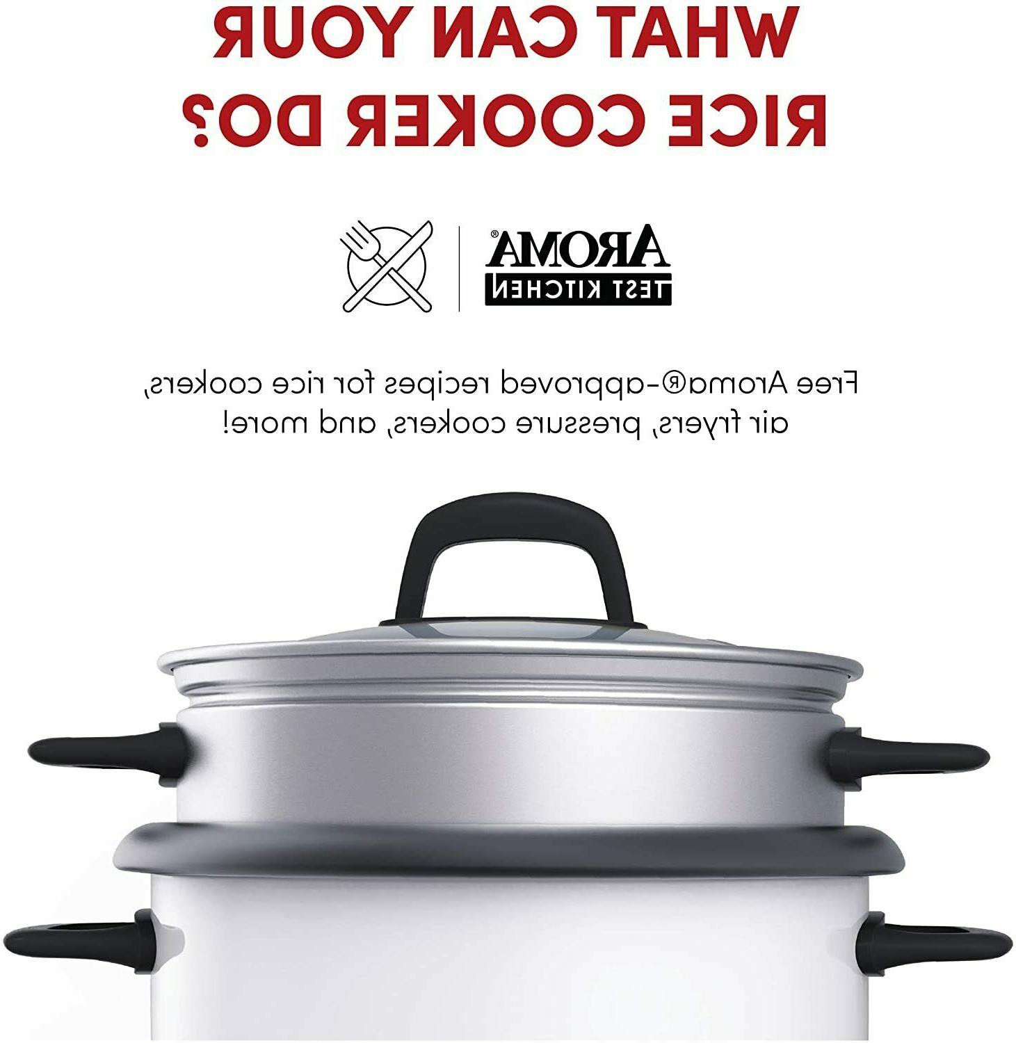 Aroma And Food Steamer Non Stick Automatic 6 Cup
